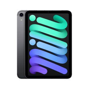 iPad mini Wi-Fi + Cellular 256GB - Stellargrå