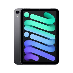 iPad mini Wi-Fi 256GB - Stellargrå